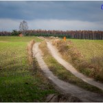 trawers_brodnica_2016__img_0270